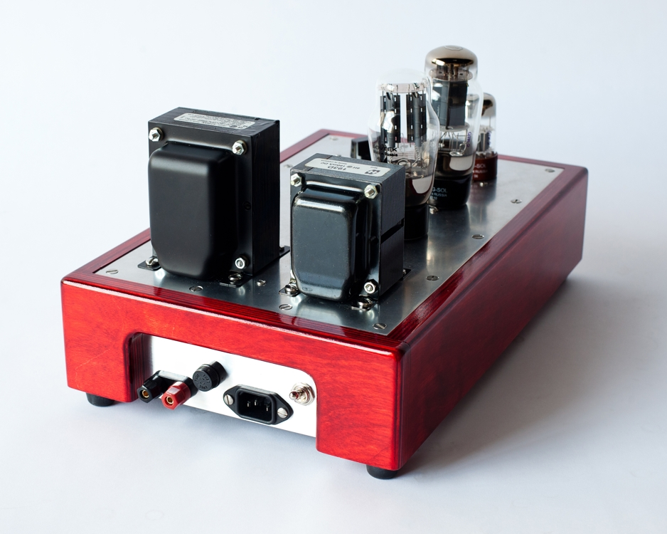 Specimen Custom Mini Monoblock Tube Amplifier