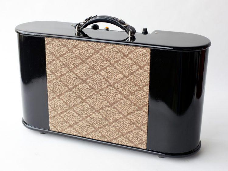 Specimen Custom 10-watt Guitar Tube Amplifier