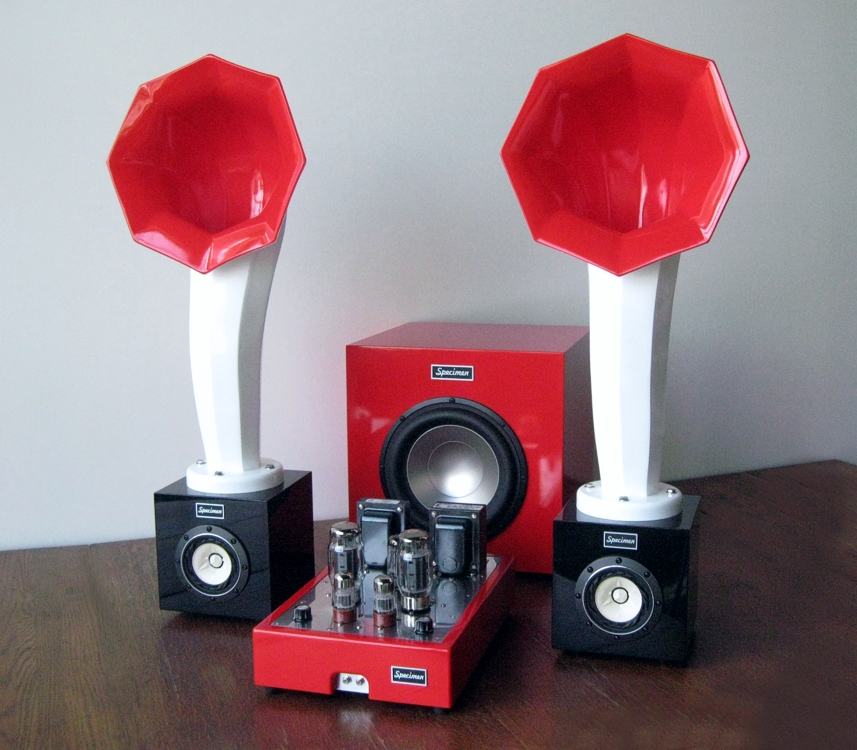 Specimen Custom Single-ended Hi-Fi Stereo Tube Amplifier, Subwoofer and Little Horn Speakers